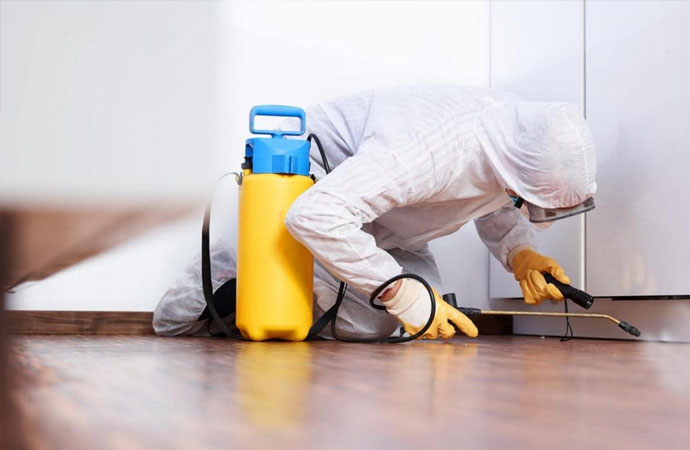Professional Liability Insurance for Pest Control Professionals in Texas
